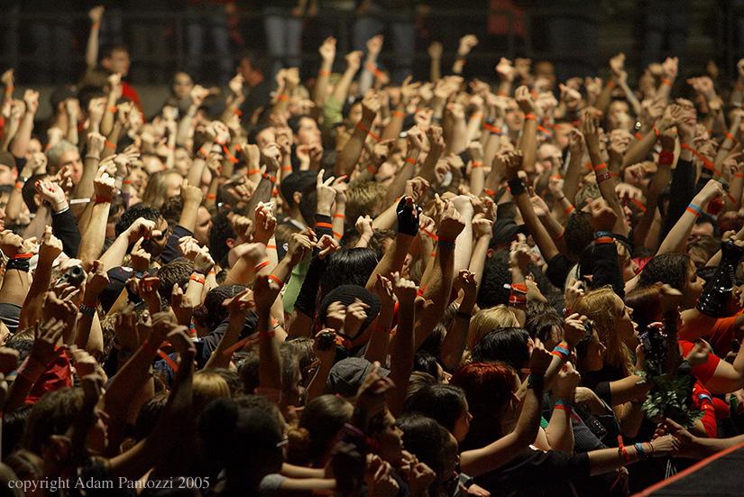 crowd-ED