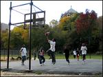 B-ball in the park