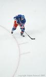 hockey action figure