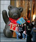 F.A.O bear